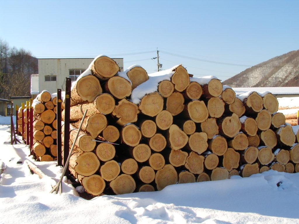 ヒノキの丸太・木材
