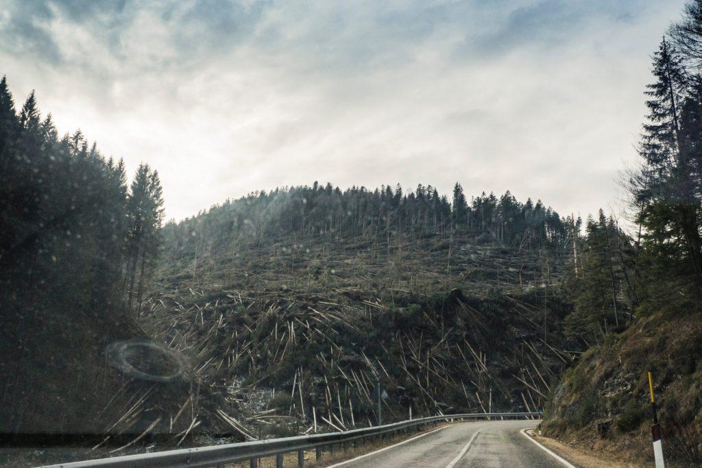 豪雨により流木による被害や土砂災害が発生するのを防ぐために、木を使う